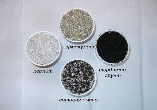Какая почва нужна для фиалок?