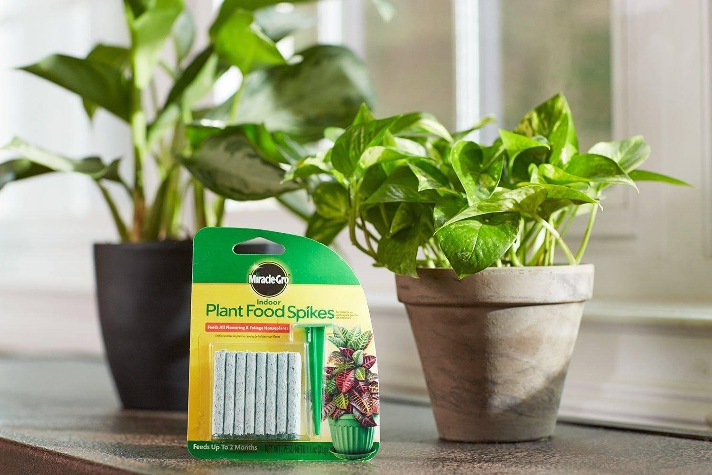 Лучшие удобрения для садовых и домашних цветов