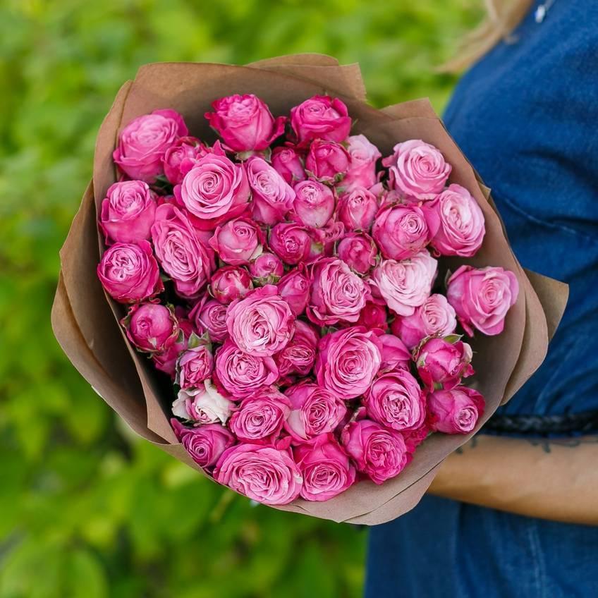 Сорт розы флорибунда румба: описание декоративного кустарника, как ухаживать