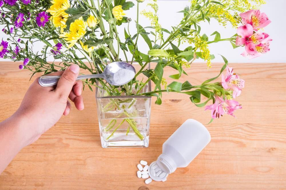 Что сделать, чтобы срезанные розы дольше стояли в вазе и почему они быстро вянут?