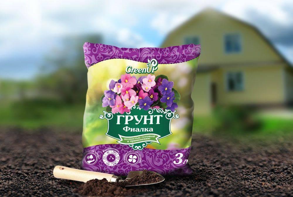 Земля для фиалок: подготовка почвы, сравнение грунтов, лучший состав своими руками