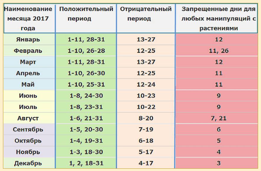 Лунный календарь для растений по дням на март 2020
