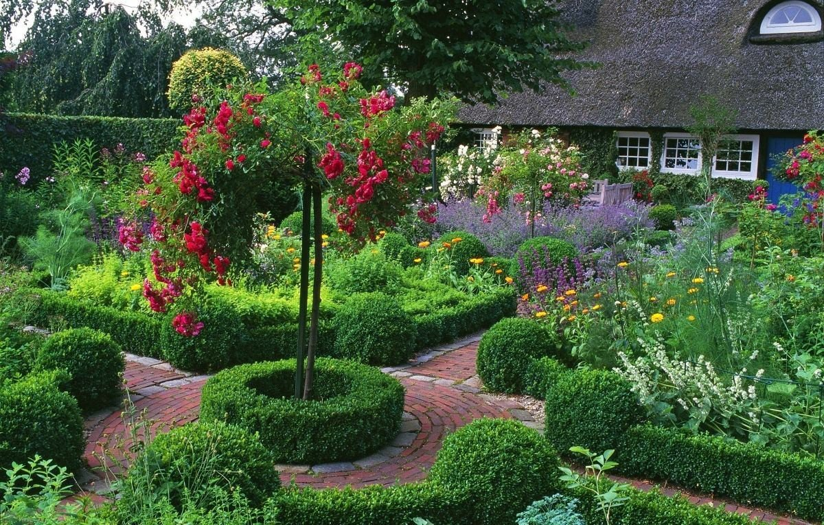 Кустарники цветущие все лето зимостойкие: декоративные растения для подмосковья, фото с названиями