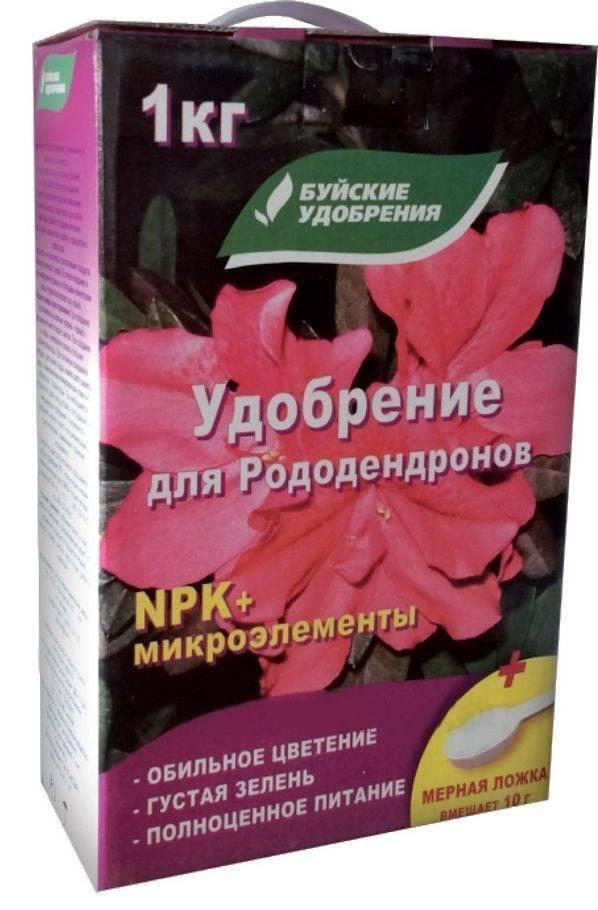 Чем подкормить рододендрон во время цветения. рододендрон: уход по сезонам. ещё один метод правильной подкормки