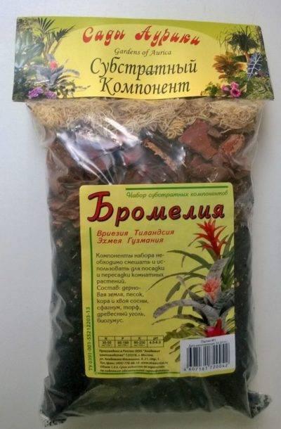 Как ухаживать за растением гузмания