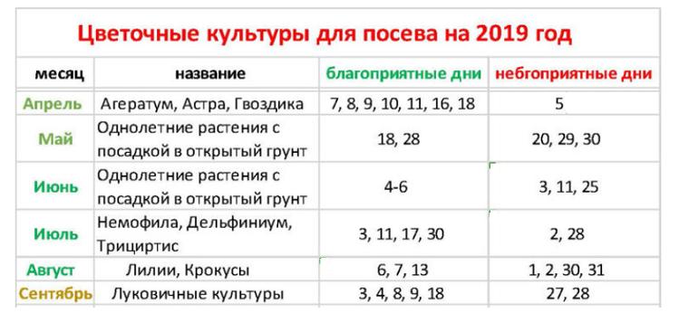 Лунный календарь для растений по дням на февраль 2020 :: инфониак