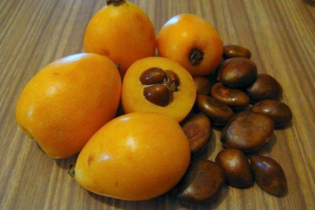 Сезон мушмулы: время созревания фрукта