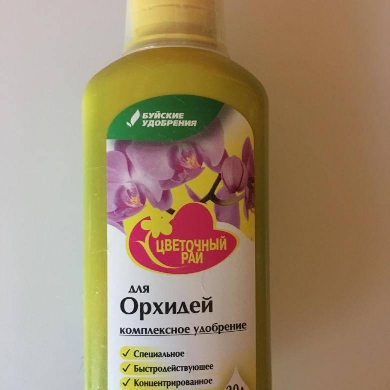 Рекомендации, чем подкармливать орхидею фаленопсис: корневин, глюкоза, витамины