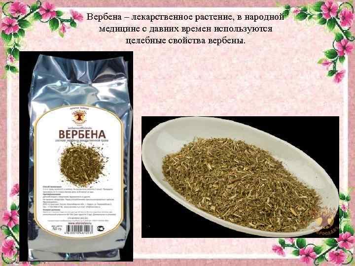 Эфирное масло вербены: свойства, применение, отзывы