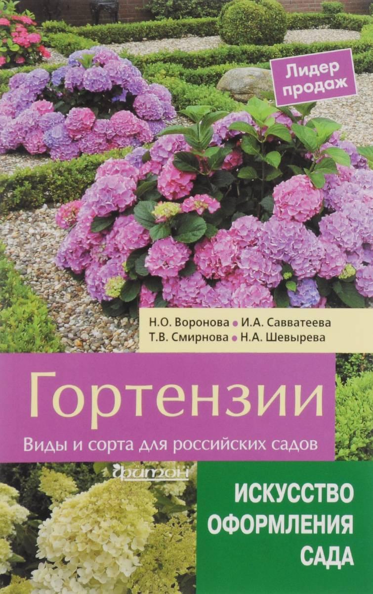 Розовая гортензия: разновидности, посадка и уход