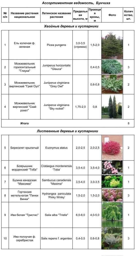 Мединилла цветок: уход в домашних условиях и методы размножения