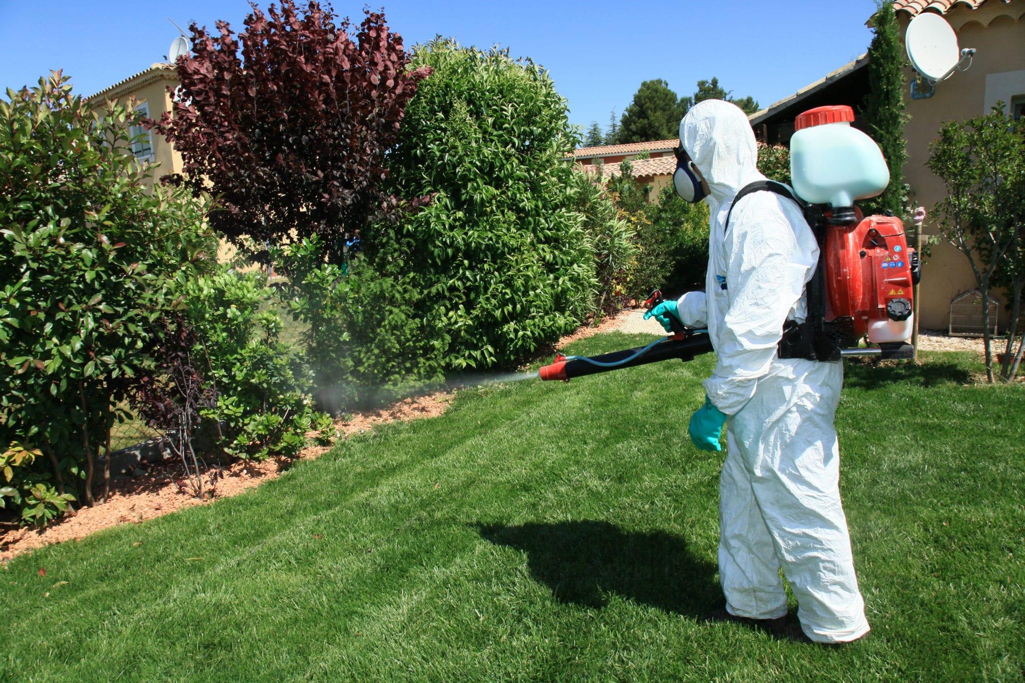 Безопасные гербициды из подручных средств