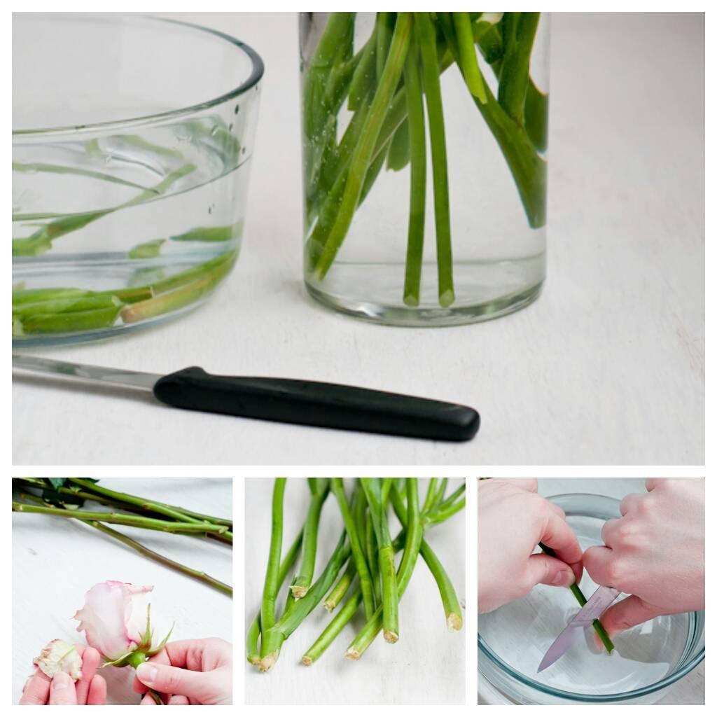 9 советов, как дольше сохранить букет цветов в вазе с водой
