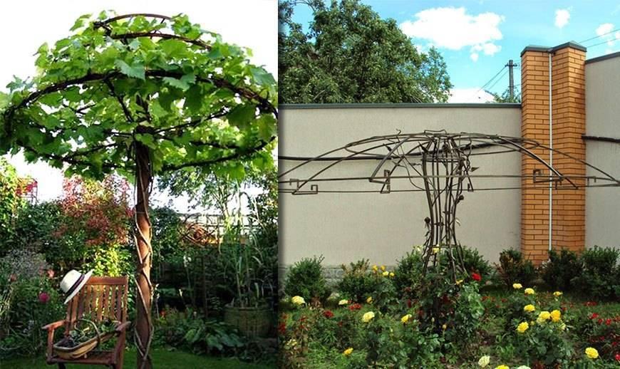 Опора для клематиса: как сделать шпалеру, арку для цветов своими руками, идеи, подставка для роз, деревянная решетка