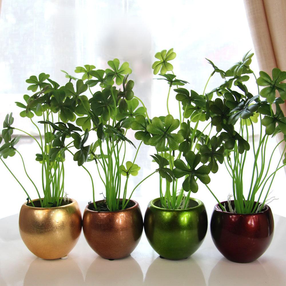 Комнатные растения – какие бывают, как подобрать для несложного ухода. самые красивые домашние цветы. ядовитые растения