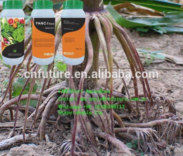 Практическое руководство, как нарастить корни у орхидеи