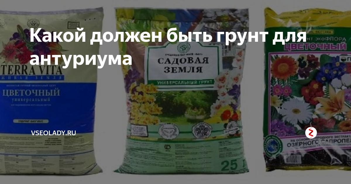 Какой грунт подойдет для выращивания спатифиллума?
