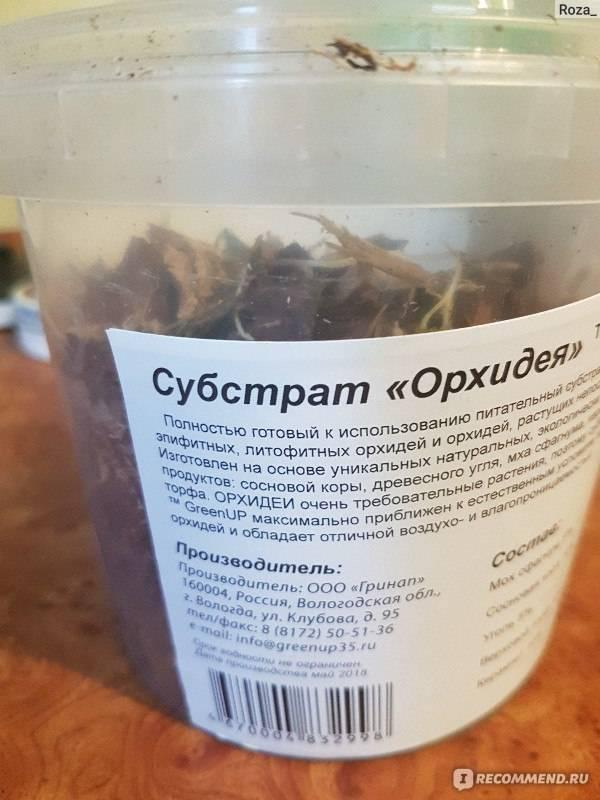 В какой грунт пересадить орхидею: как выбрать правильный субстрат, можно ли использовать обычную землю и когда нужна полная замена почвы?