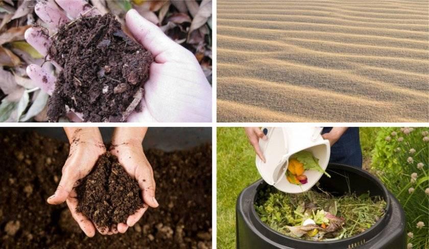 Как сделать более кислую почву для гортензии