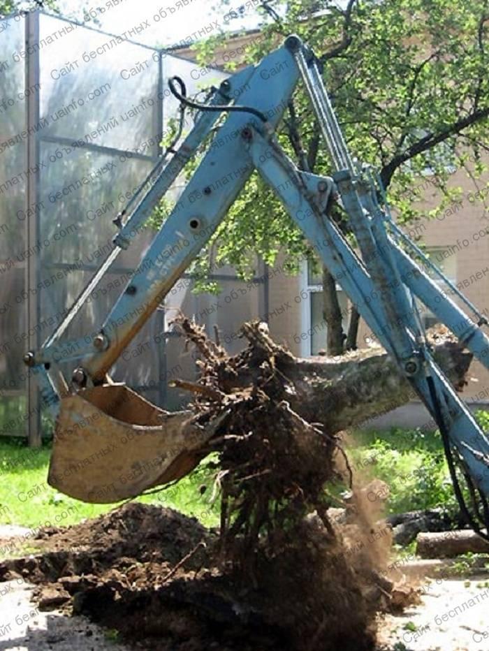 Как избавиться от корней деревьев - wikihow