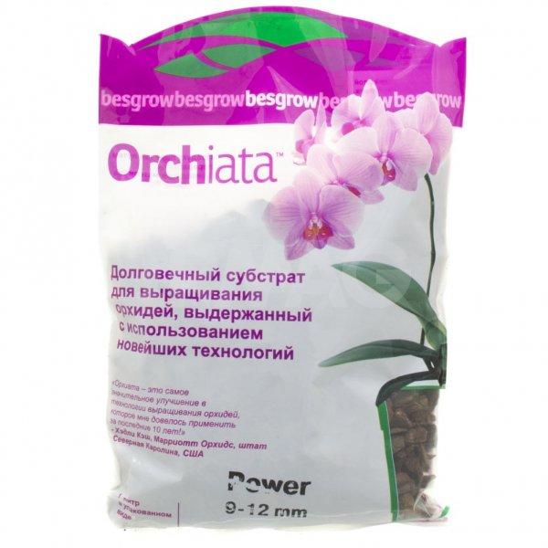 Выбираем идеальный грунт для орхидей: состав и приготовление своими руками