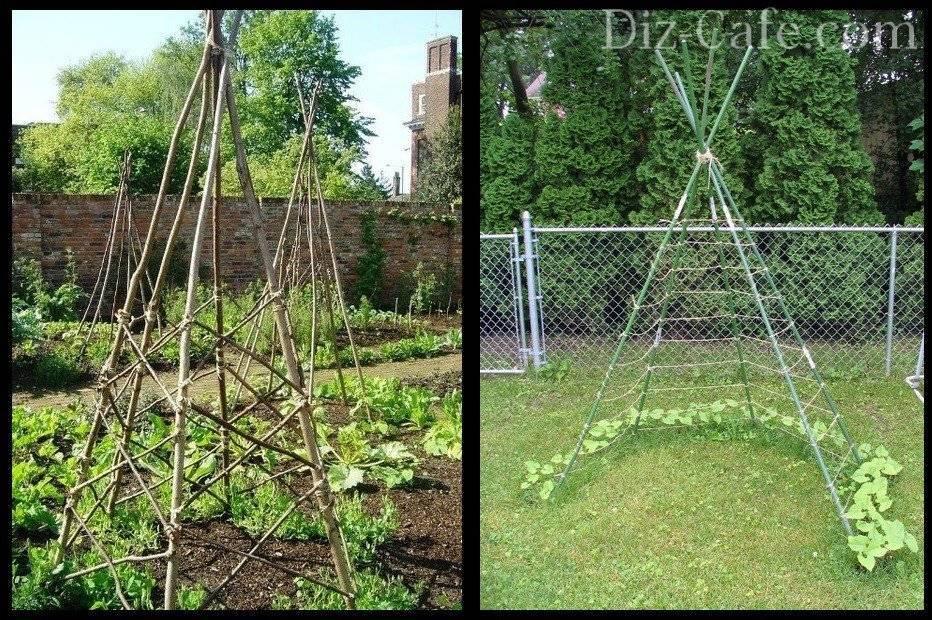 Шпалера сделанная своими руками для растения клематис: на даче и в саду. подвязка на фото