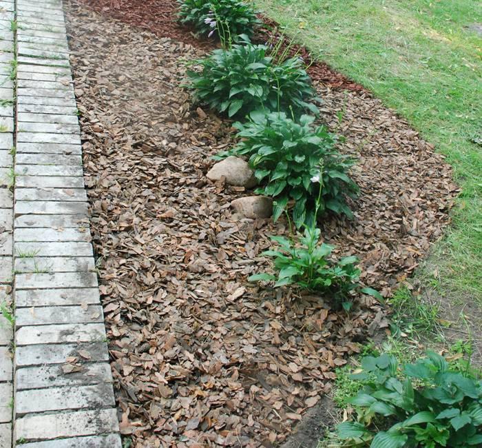 Мульчирование опилками, соломой, травой и еще 9 видов мульчи