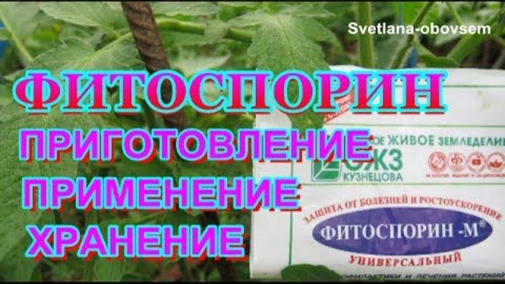 Препарат фитоспорин м: отзывы, инструкция по применению