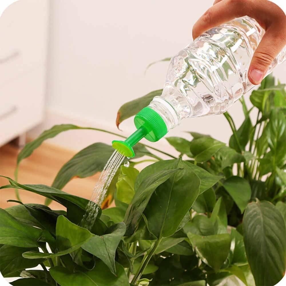 Как смягчить жесткую воду для полива цветов
