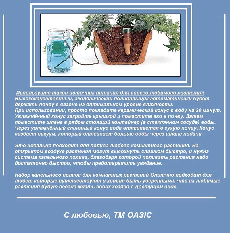 Капельный полив для комнатных растений: как из пластиковых бутылок сделать систему капельного полива для домашних цветов своими руками?