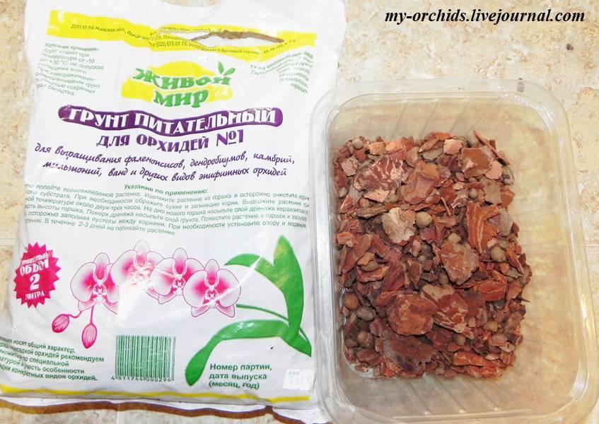 Удобрение для орхидей: примеры подкормки в домашних условиях - pocvetam.ru
