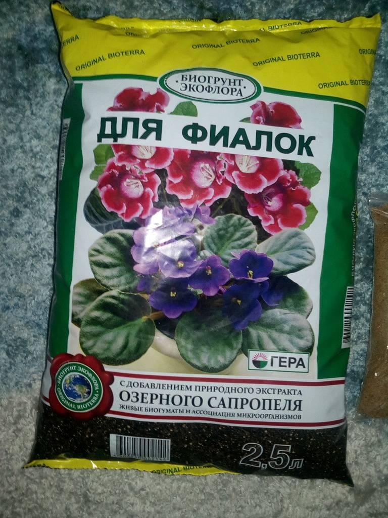 Почва для сенполий: покупной грунт или «самодельный»?