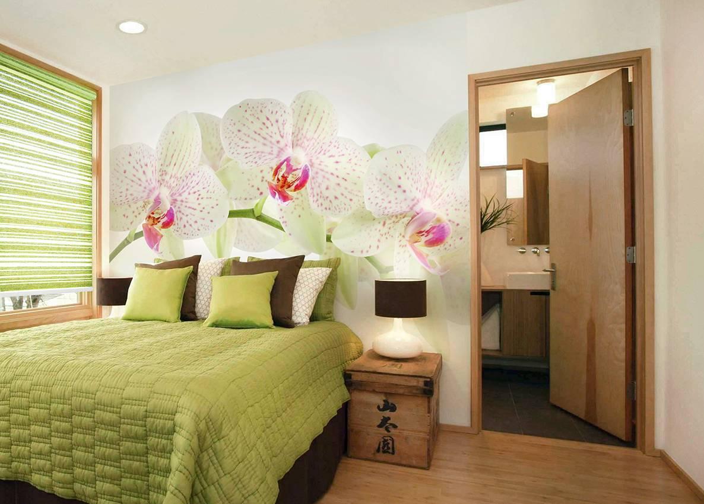 Почему нельзя держать дома орхидеи – народные приметы и мнение ботаников почему нельзя держать дома орхидеи – народные приметы и мнение ботаников