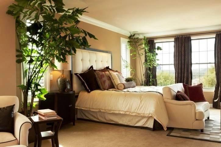Прекрасные орхидеи в интерьере квартиры — фото