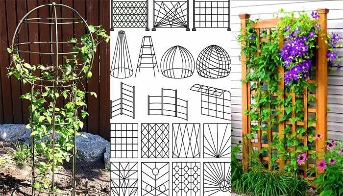 Делаем красивые опоры для клематиса своими руками: из сетки, арматуры, дерева и другие варианты с фотографиями