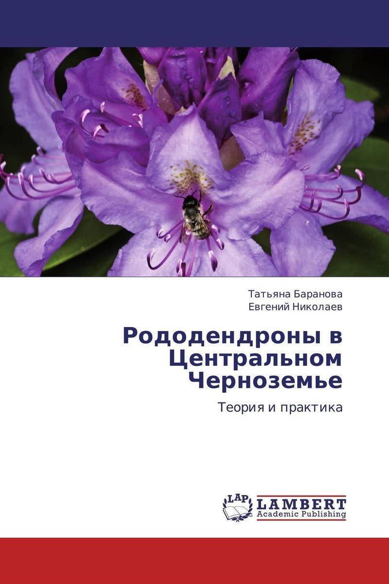 Рододендрон адамса (33 фото): посадка семян и саженцев рододендрона саган-дайля, особенности его выращивания в подмосковье и других регионах
