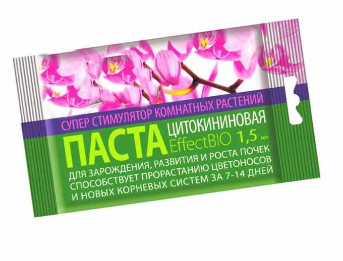 Варианты как правильно и какими средствами можно подкармливать орхидеи