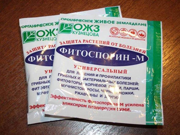 Фитоспорин-м: инструкция по применению, советы и правила использования порошка, пасты и жидкости