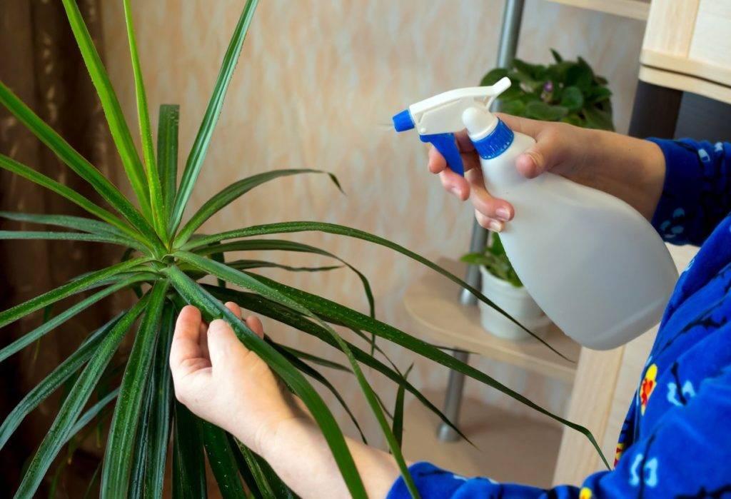 10 основных ошибок при поливе огорода