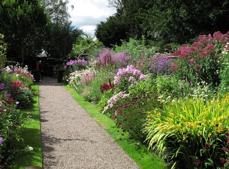 Кустарники, цветущие все лето розовыми цветами, теневыносливые и зимостойкие