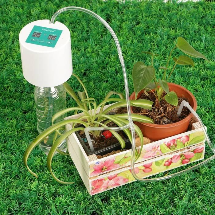 Системы автополива для комнатных растений своими руками