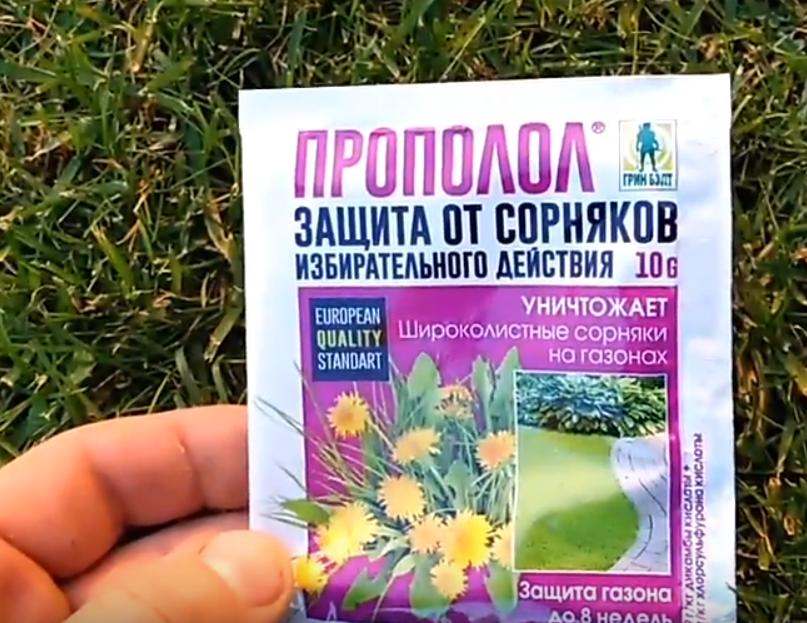 Способы избавления от вьюнка на участве: как вывести с огорода сорняк навсегда