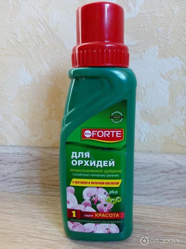 Успешная реанимация орхидеи янтарной кислотой