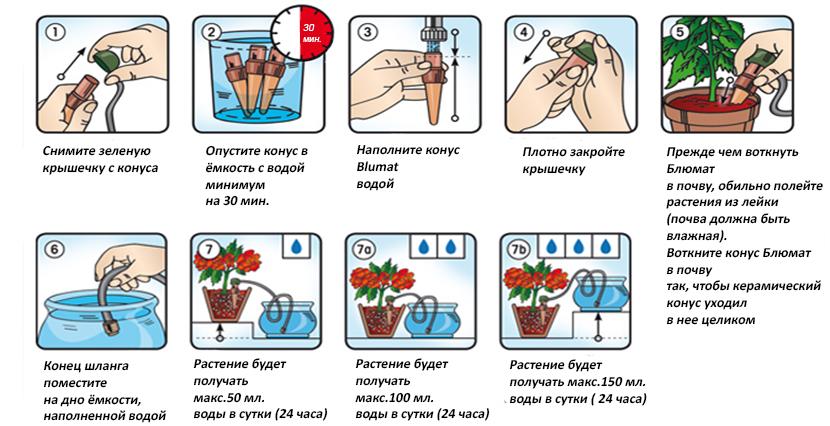 Советы опытных цветоводов о том, можно ли поливать цветы кипяченой водой