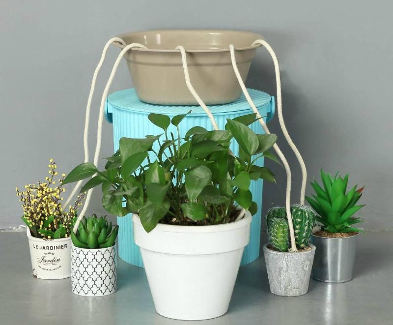 Можно ли поливать цветы минеральной водой