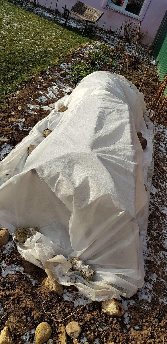 Как подготовить розы к зиме на даче. подготовка роз к зиме