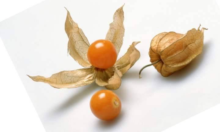 Физалис овощной и ягодный — какой на вкус