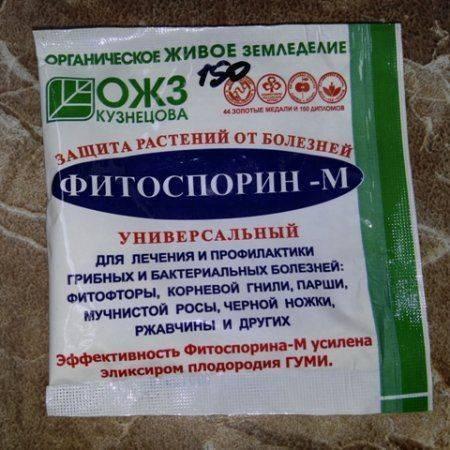 Фитоспорин м инструкция по применению, отзывы, состав пасты для комнатных растений, обработка почвы фитоспорином осенью, как развести порошок для орхидей