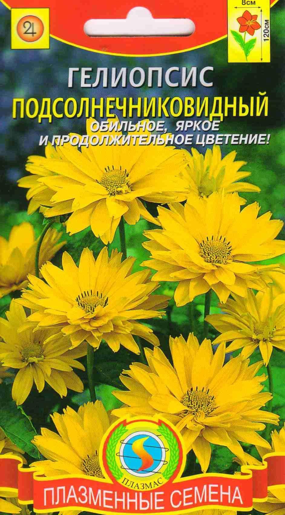 Растение гелиопсис посадка и уход в открытом грунте и на рассаду фото сортов и описания