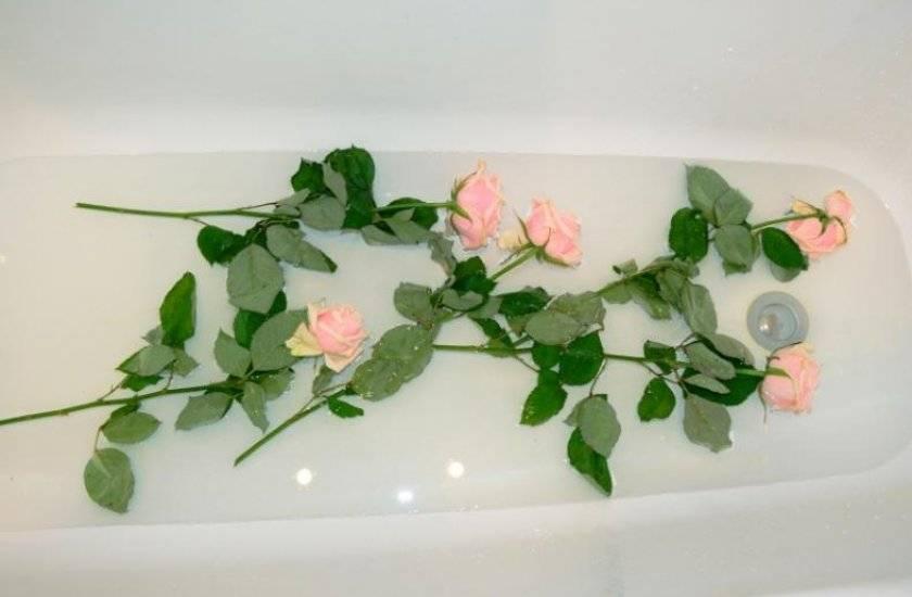 Как оживить розы, если они завяли в вазе